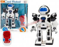 Robot 21 cm